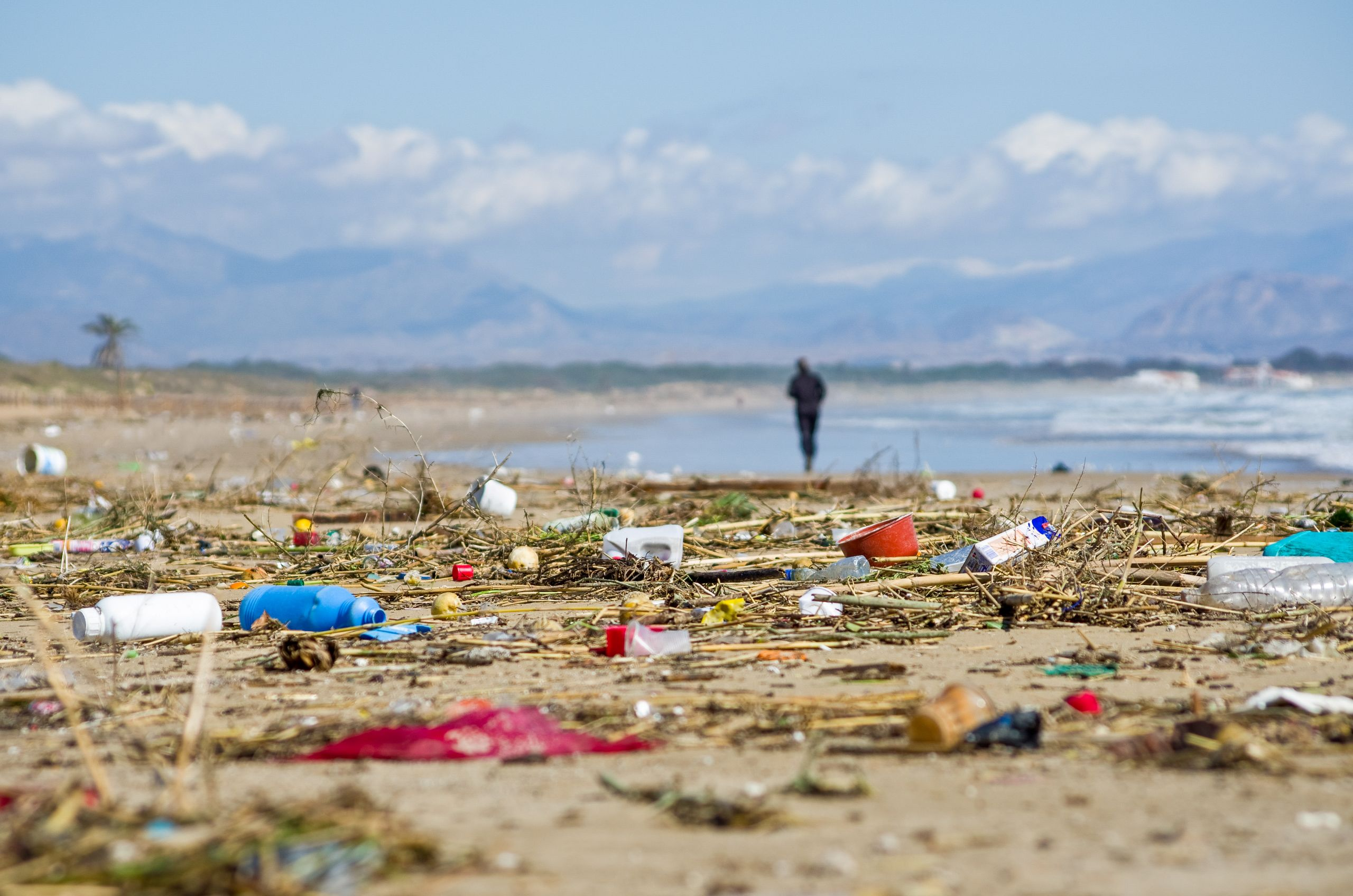 Sea shore littered by trash